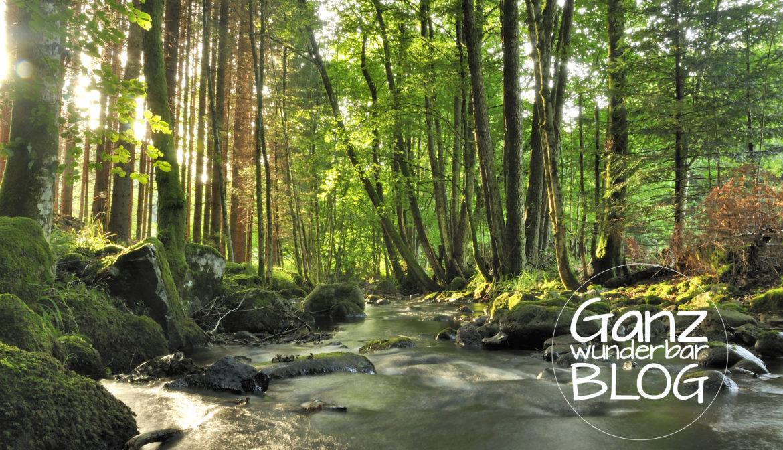 BioBooks für Umweltschutz