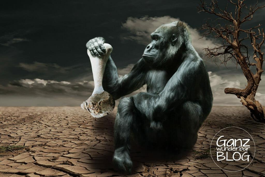 gorilla-834251