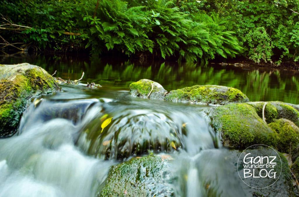 Wasserkraft, Energie, Umweltschutz, ganzwunderbar