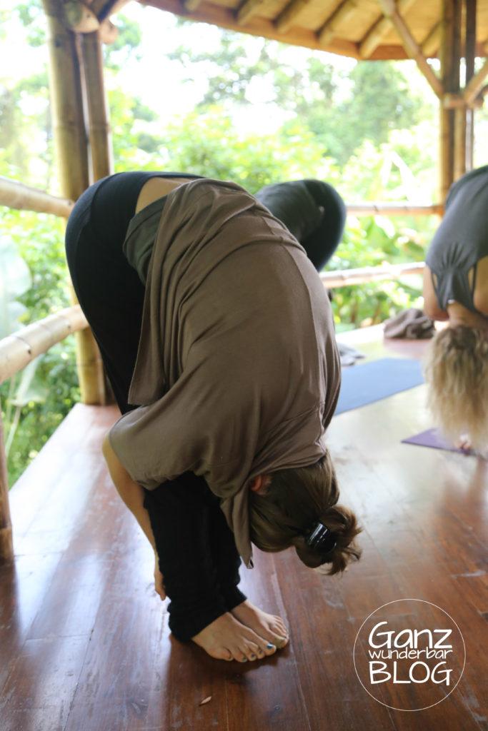 yoga-688160