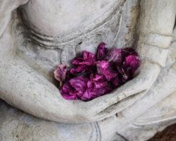 Yoga- und Meditationsreisen