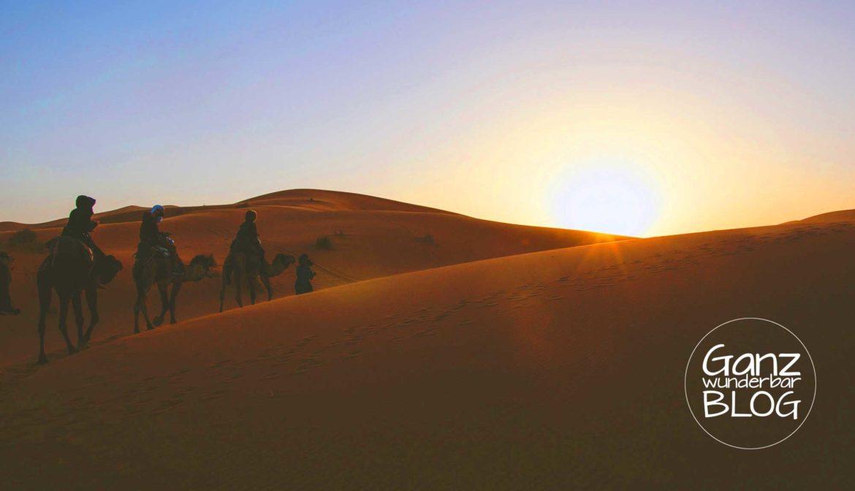 Wüstenyoga · Mein Weg durch die Wüste