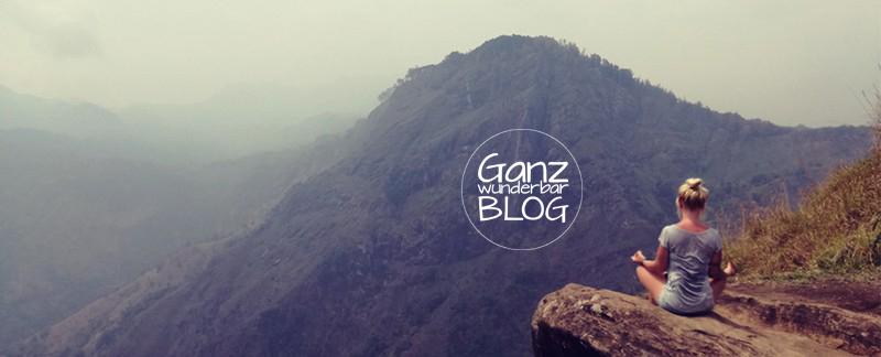 Mein Monkey und ich – mein Weg zur Mindfulness
