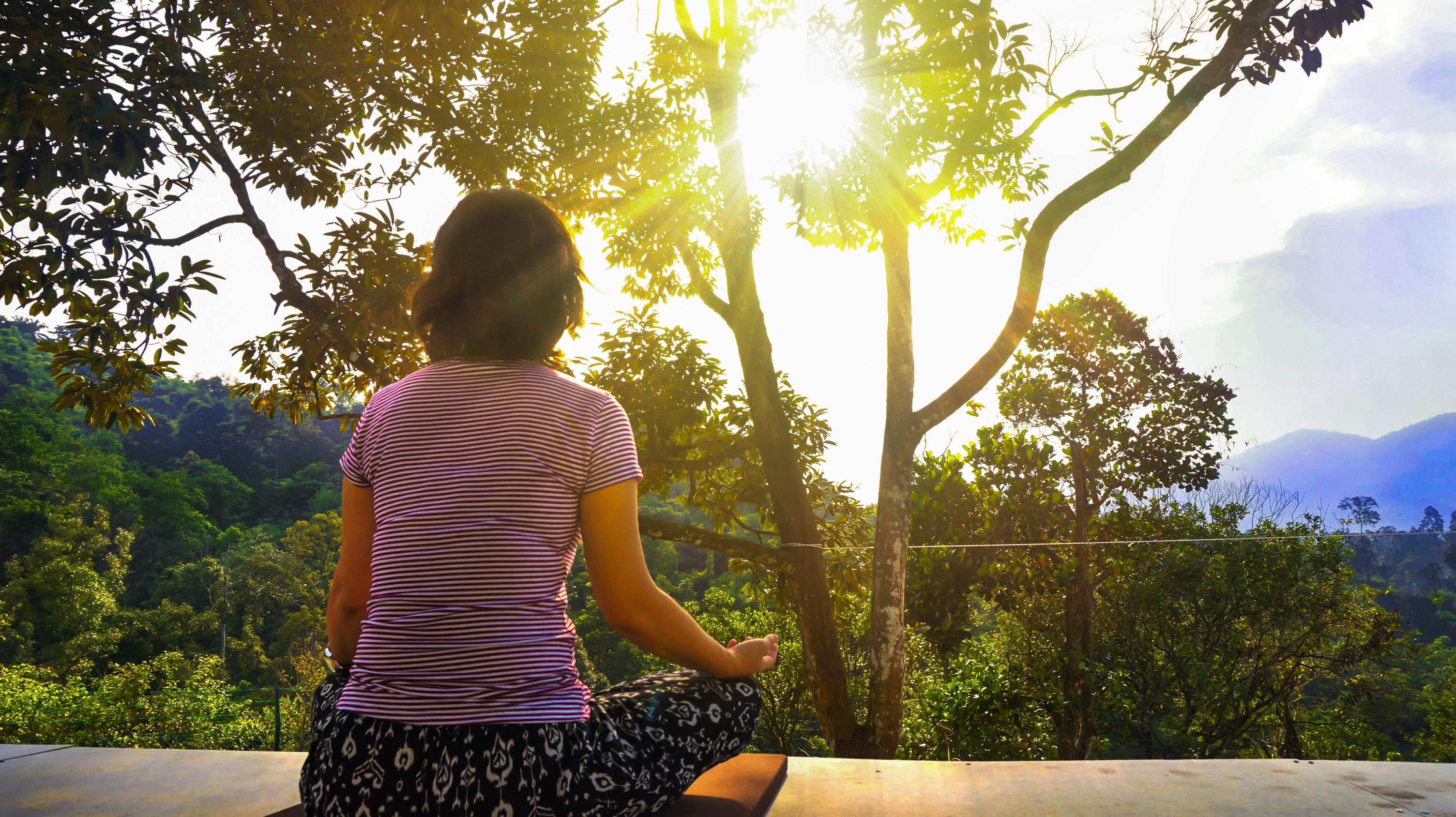 Meditation und MBSR zur Suizidprävention · Blogparade