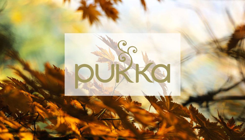 PUKKA HERBS Tee · Erlebe die Kraft der Kräuter