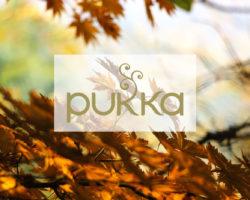 PUKKA HERBS Tee für kalte Herbsttage · Erlebe die Kraft der Kräuter