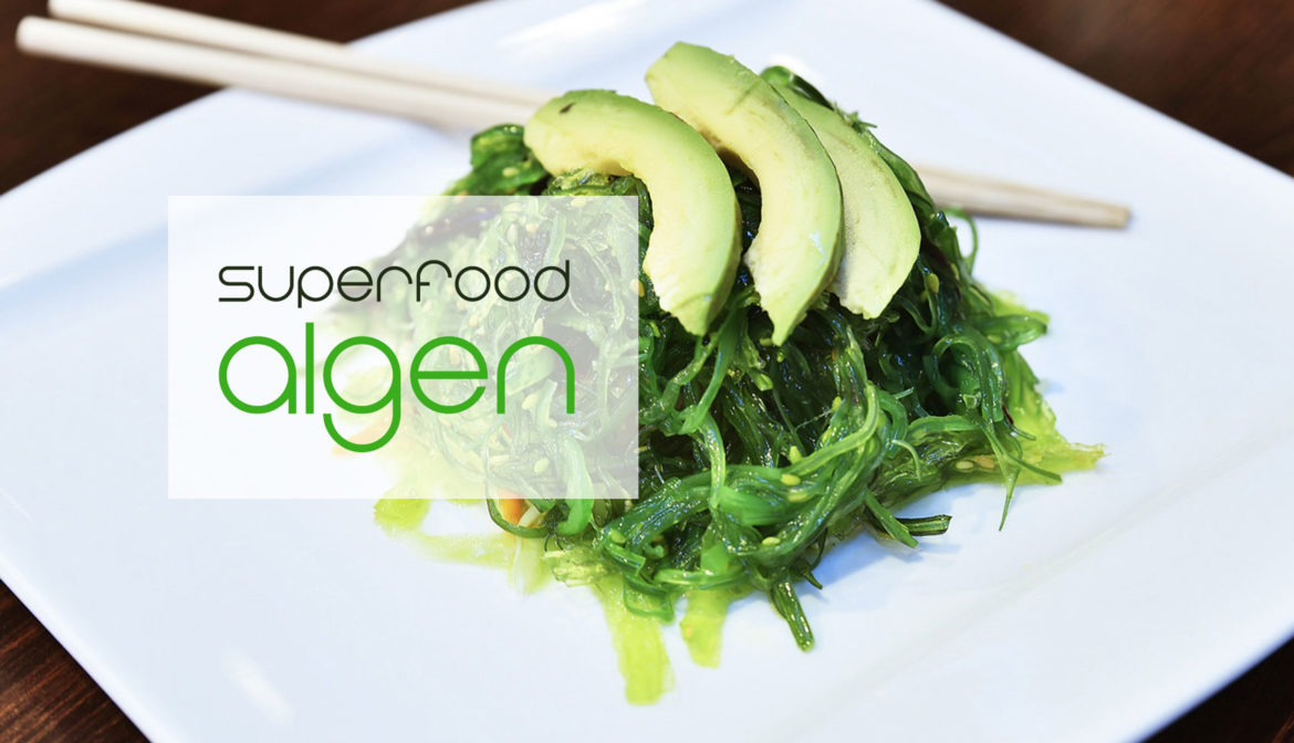 Algen als Superfood – Die Kelp Alge & Co.