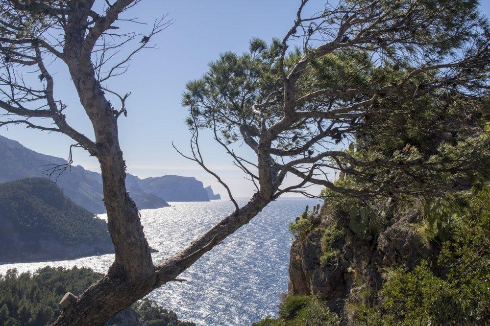 Yoga Urlaube auf Mallorca