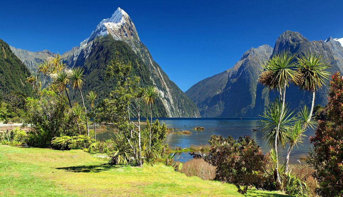 Yoga Urlaube in Neuseeland · Yoga Holidays in New Zealand
