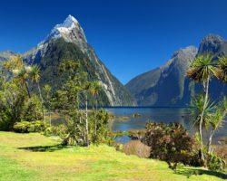 Yoga Urlaube in Neuseeland