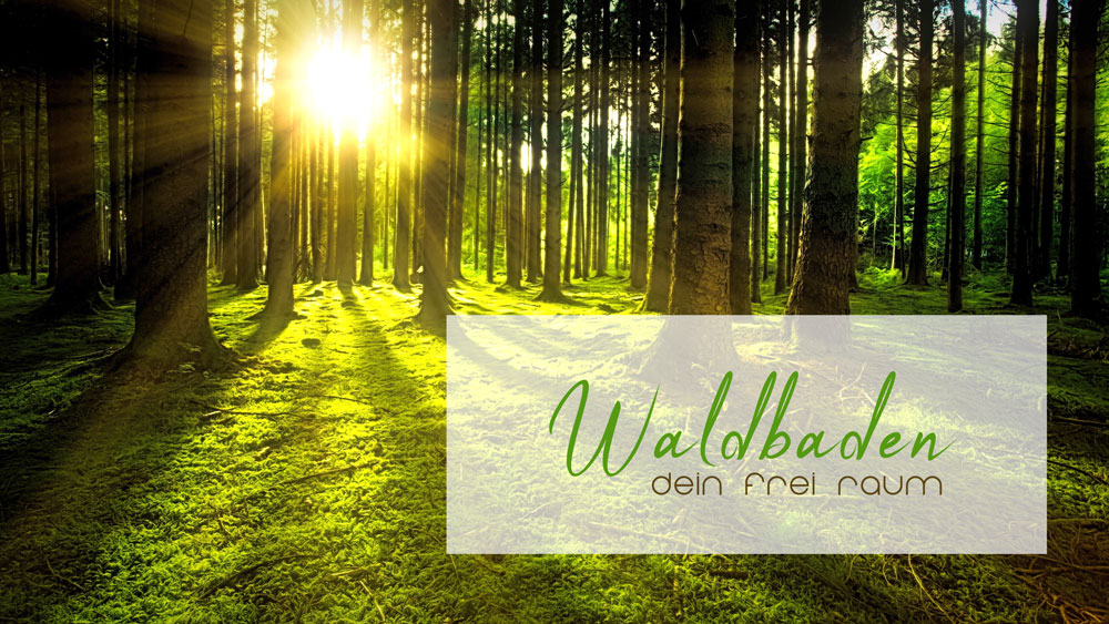 Waldbaden für Frauen – Dein Frei Raum