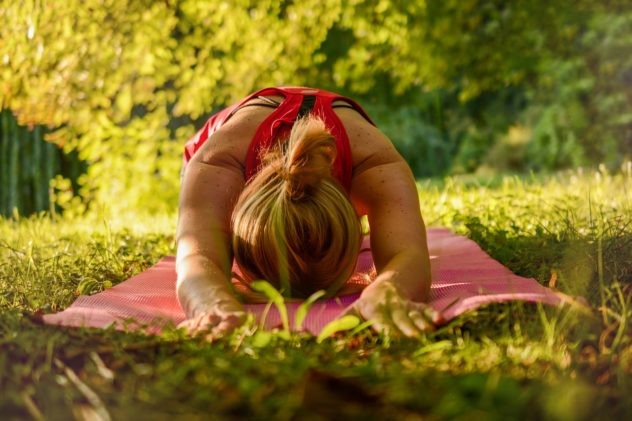 Wald-Yoga im Sauerland