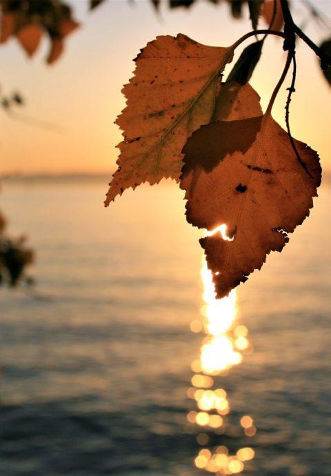Yogaurlaub im Herbst