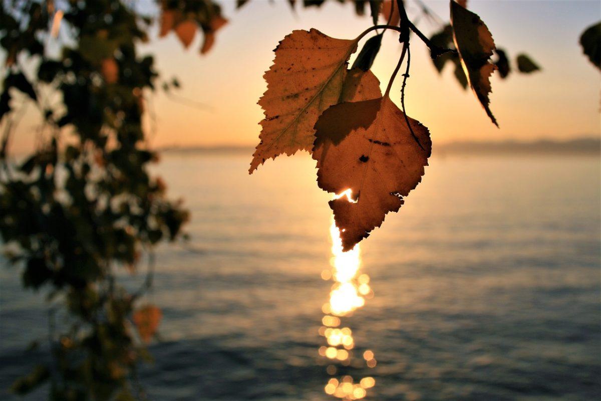 Yogaurlaub im Herbst am Bodensee