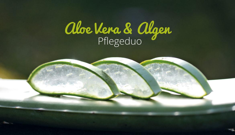 Aloe Vera & Algen Pflegeduo · Naturkosmetik in Harmonie mit der Natur
