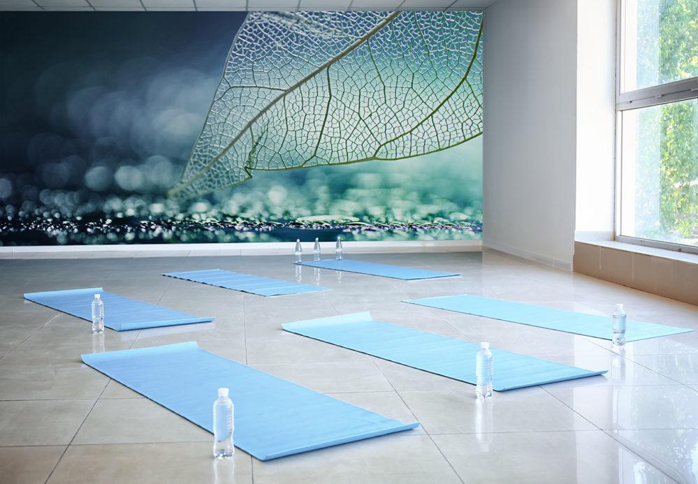 Yogastudio mit der Fototapete Blatt