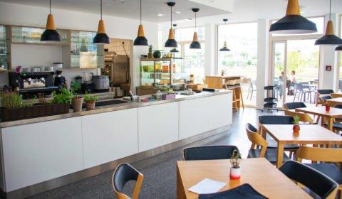Hilfe bei der Eröffnung eines veganen Restaurants