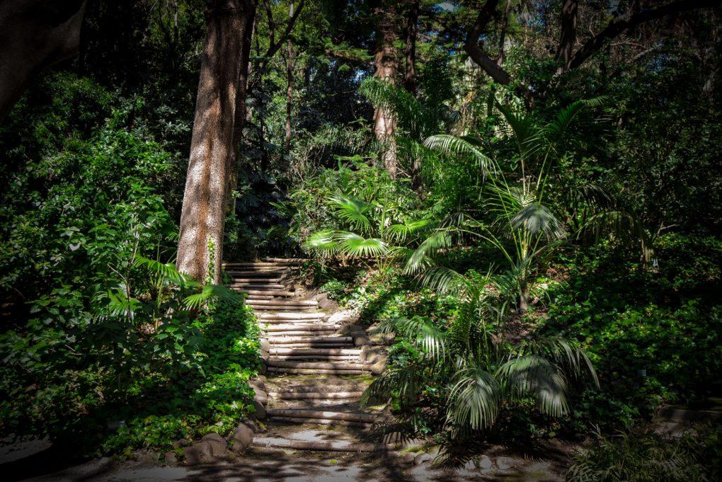Retreat im Dschungel von Peru