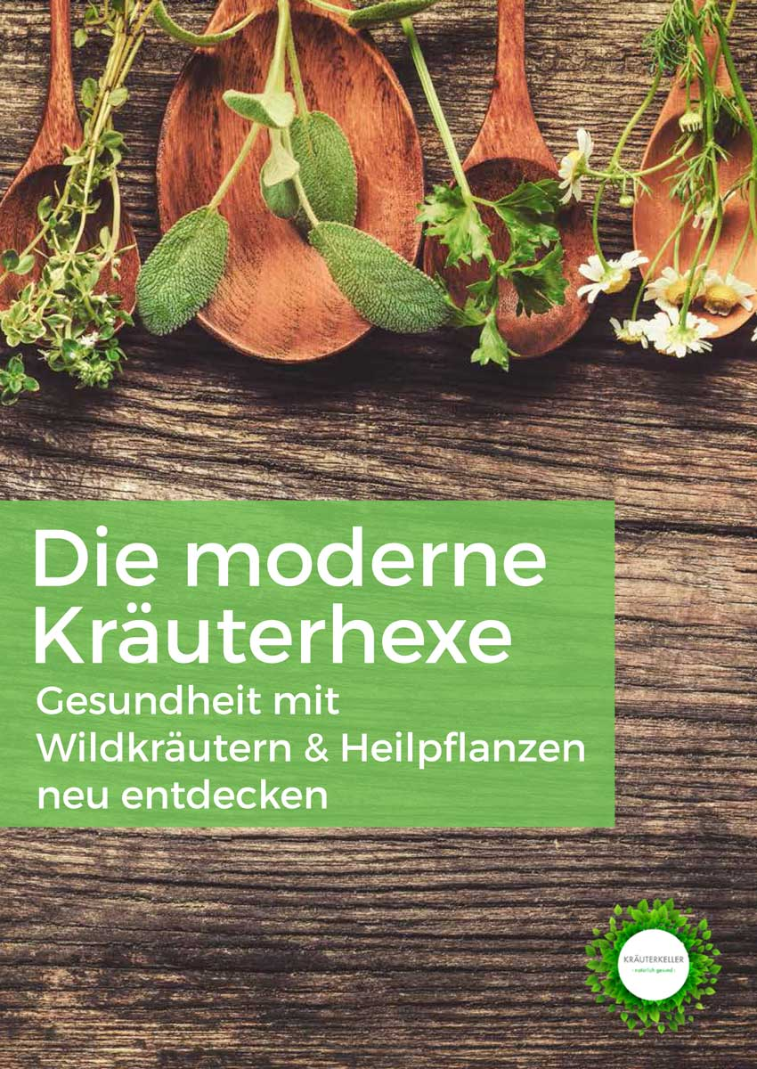 Die moderne Kräuterhexe, Gesundheit mit Wildkräutern und Heilpflanzen