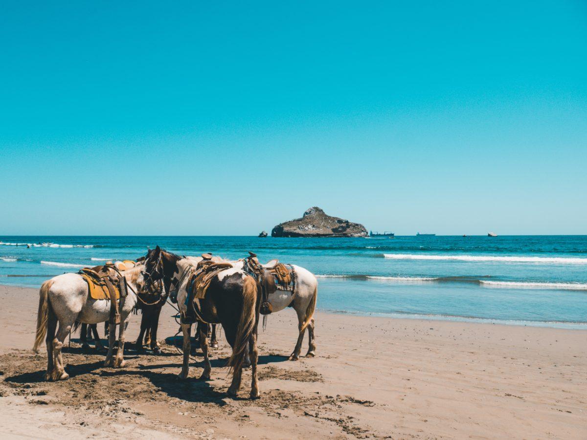 Yogaurlaub und Reiten in Spanien Andalusien