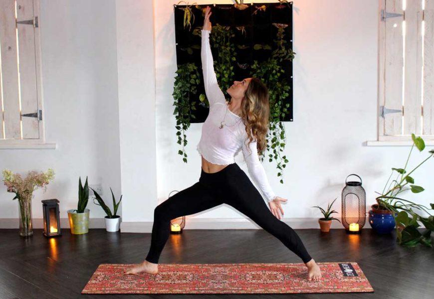 Yoga Ausbildung online